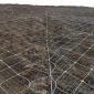 厂家现货SNS山体滑坡网 高边坡主动防护网 挂网防护用 定做直销